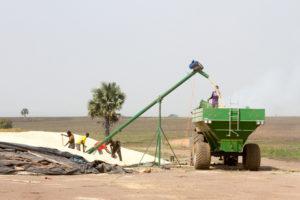 Uganda - Amatheon Agri - 0