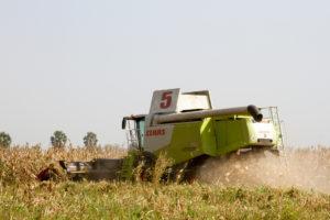Uganda - Amatheon Agri - 4
